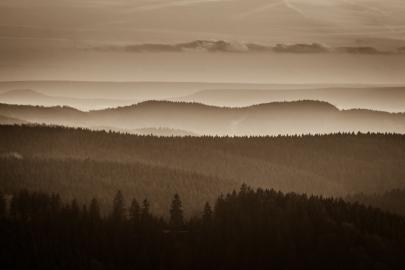 FW-Landschaften12