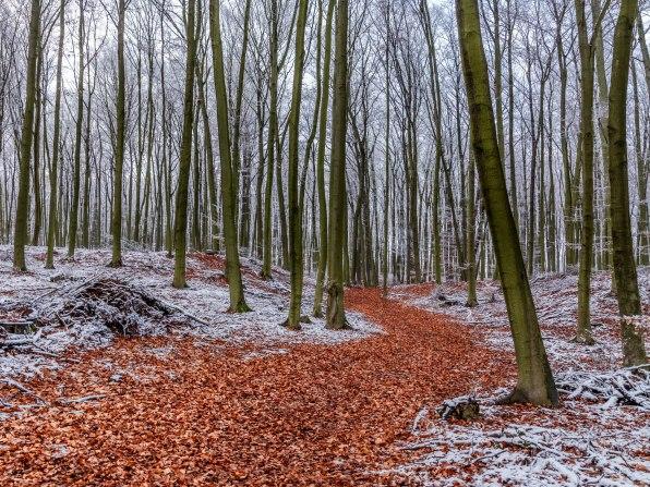 FW-Landschaften2